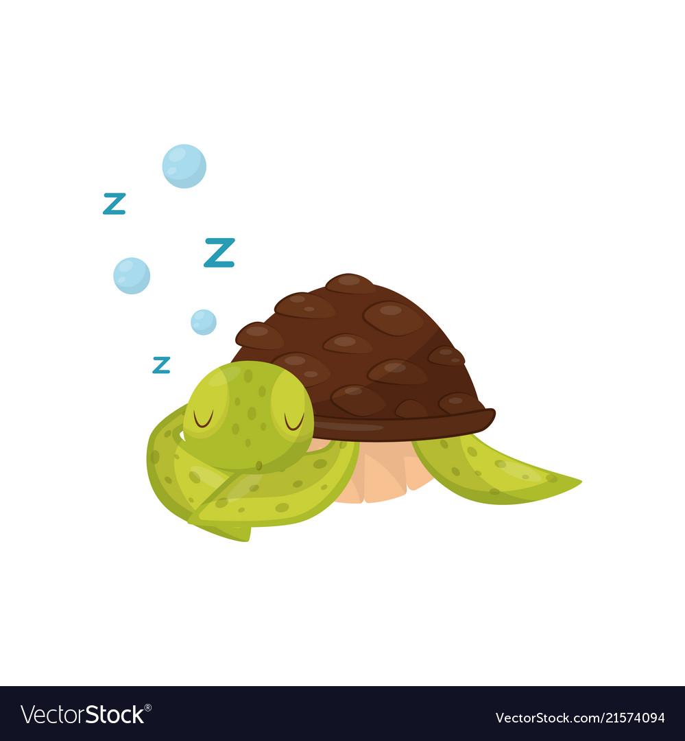 Flat Icon Of Cute Sleeping Turtle Marine Vector Image