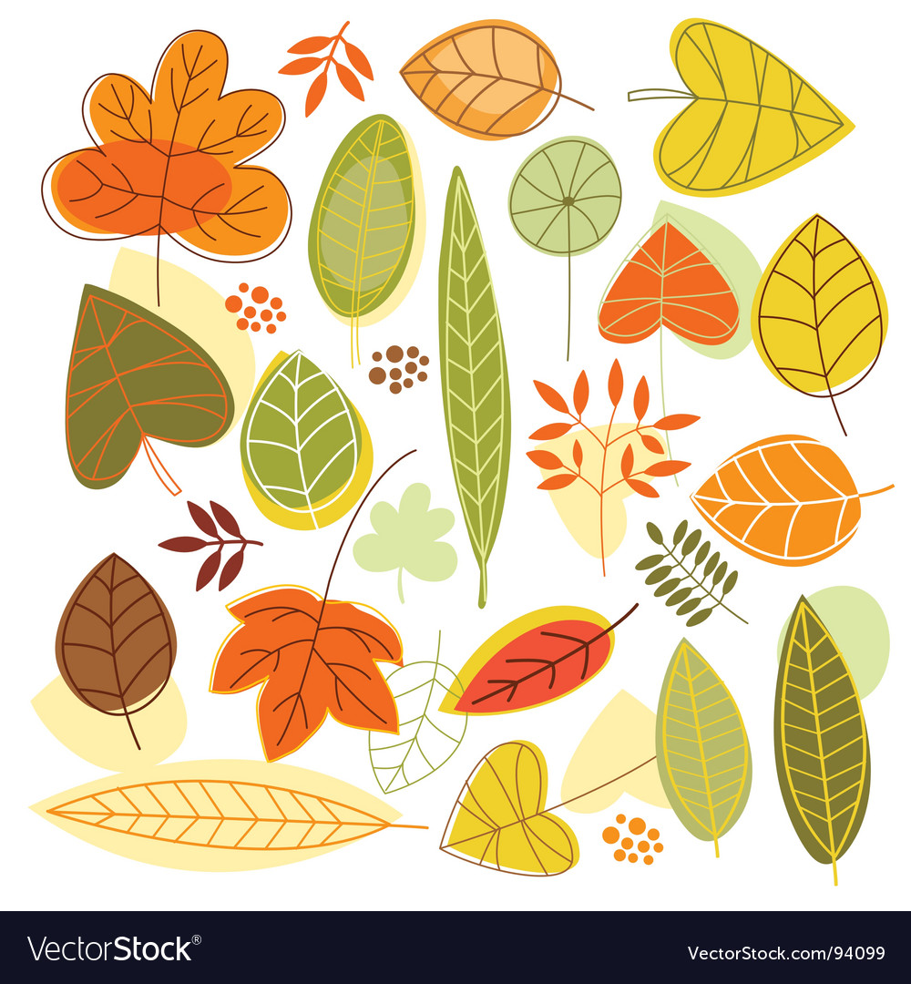 Set autumnal leaves vector