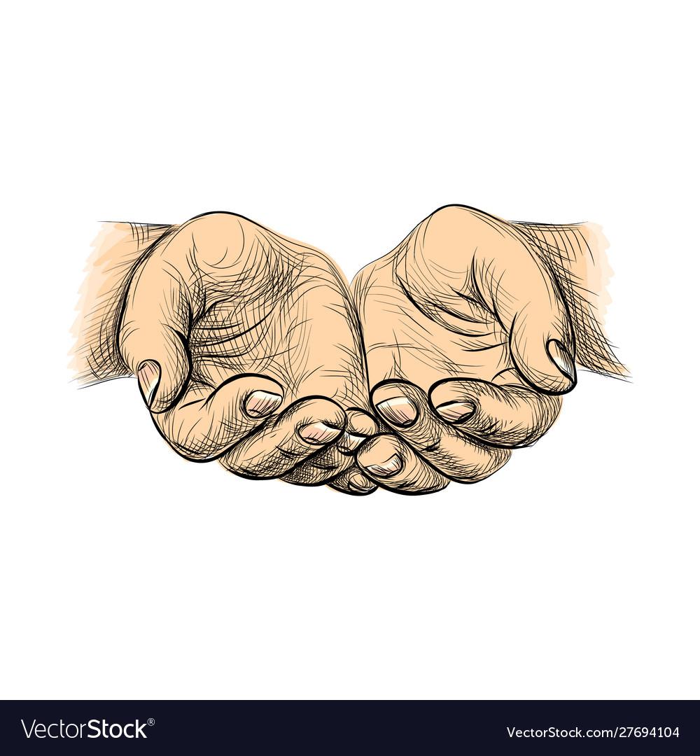 Hands palms together sketch begging hands on