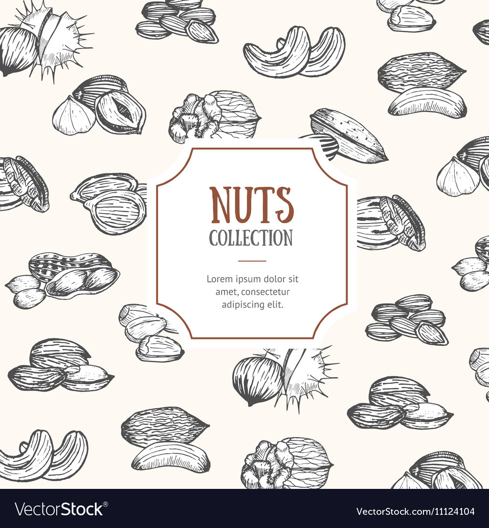 Nuts Package Design