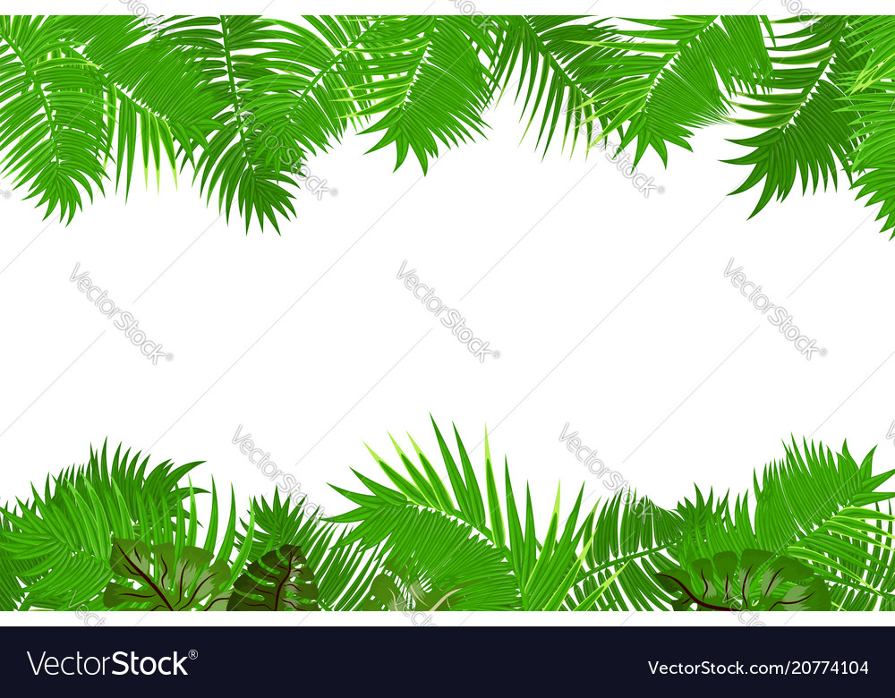 Summer jungle palm leaf frame Royalty Free Vector Image
