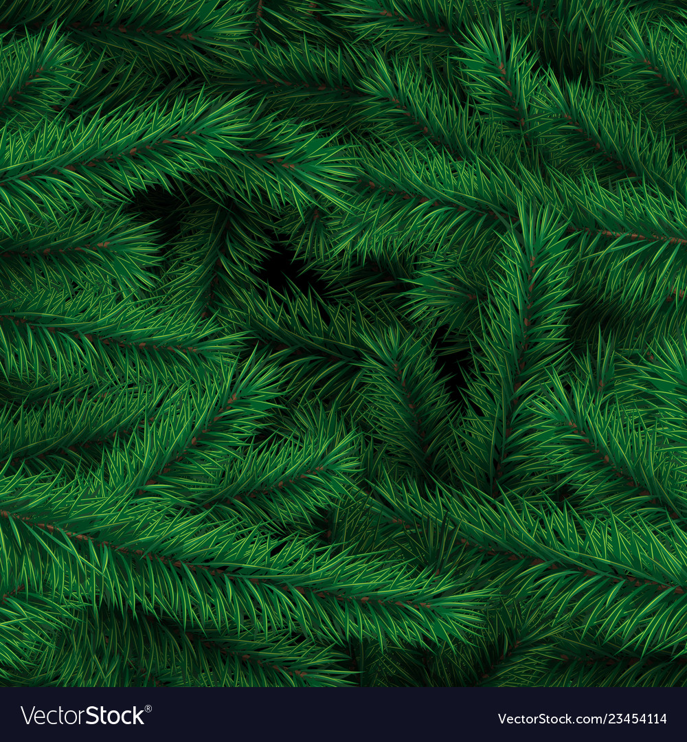 Background from branches of the xmas tree