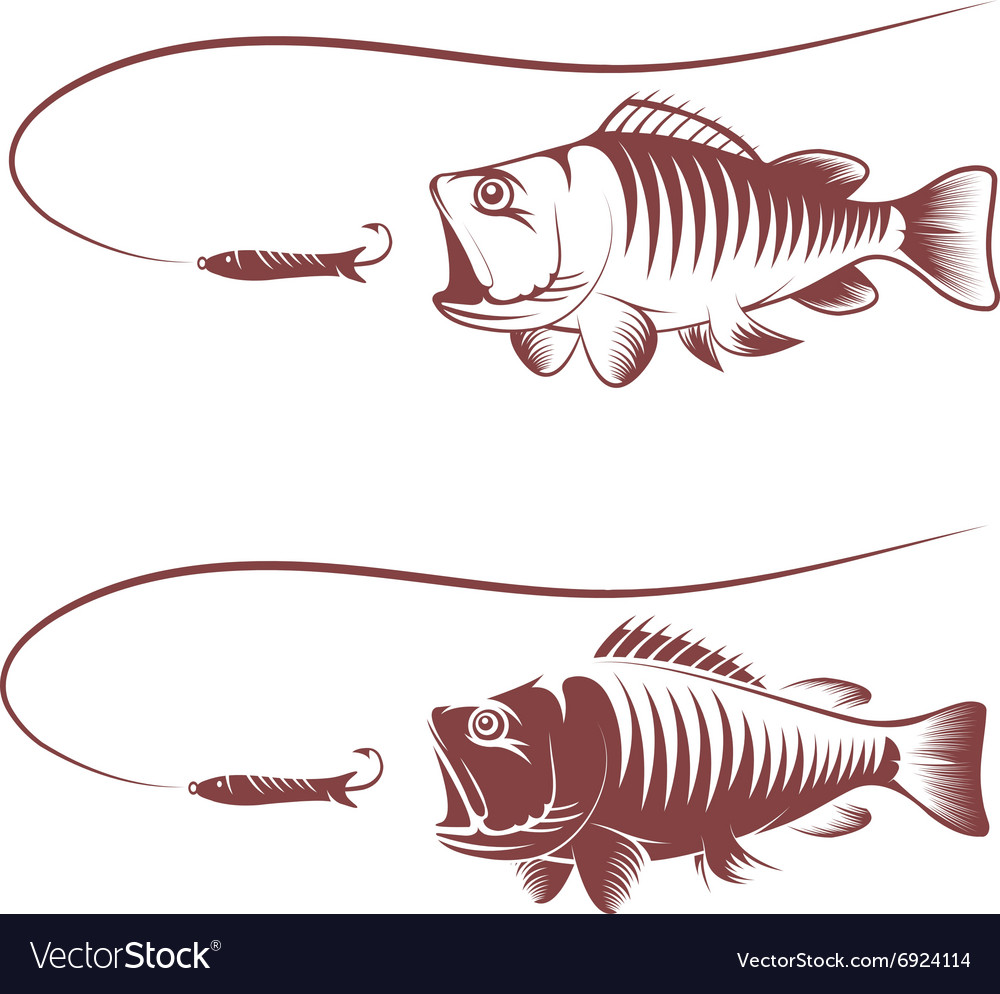 Sea bass and lure template