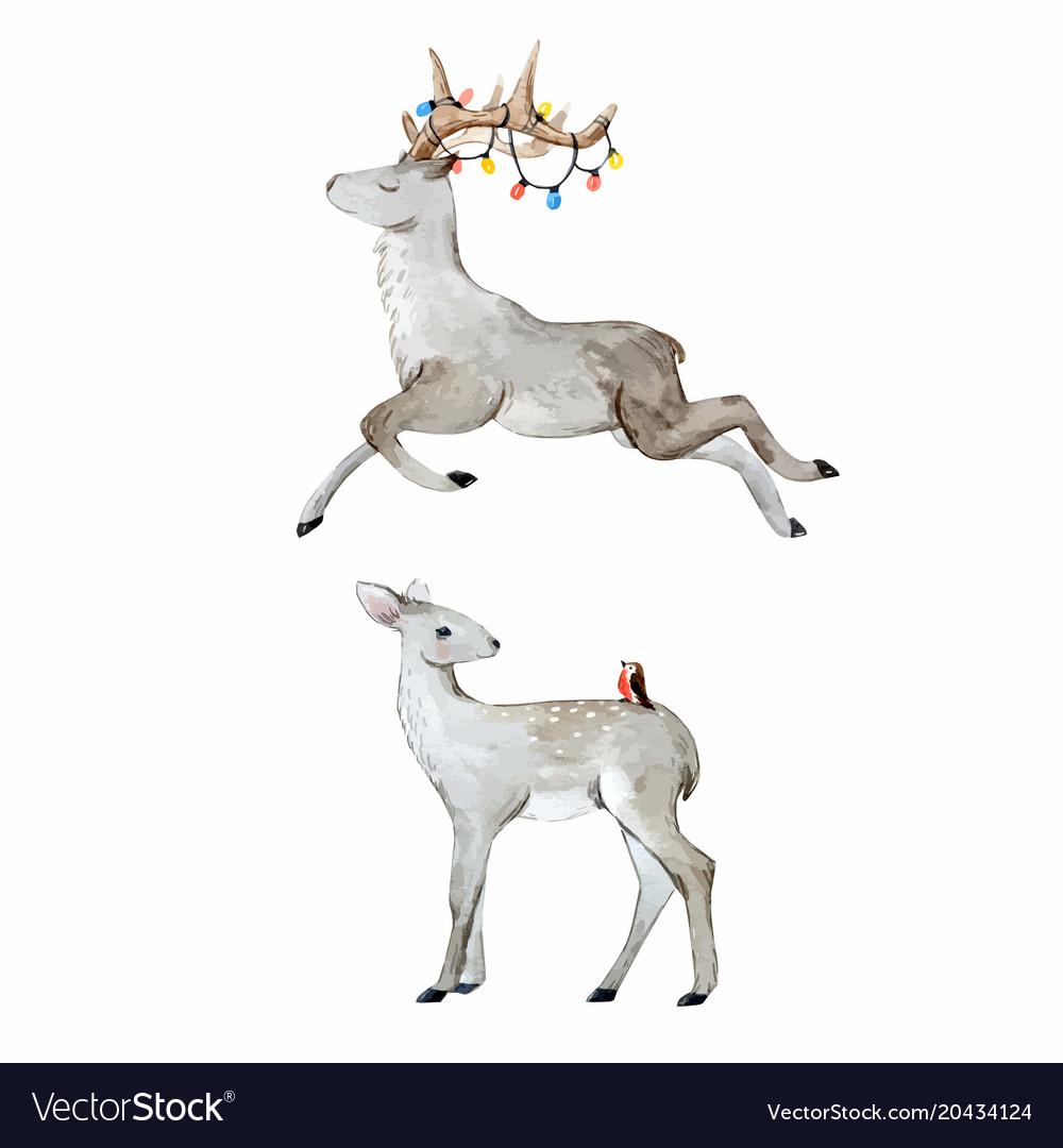 Watercolor deer set