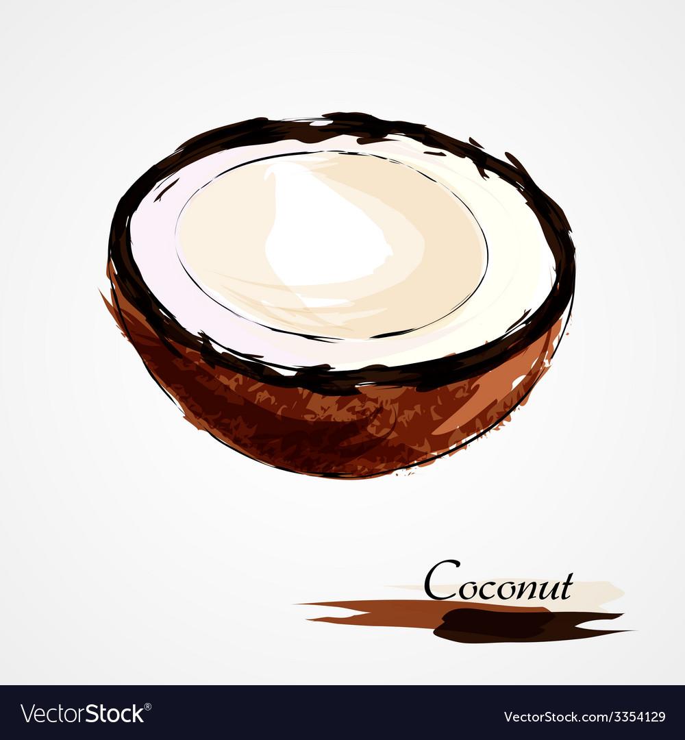 Coconut part portion vector image