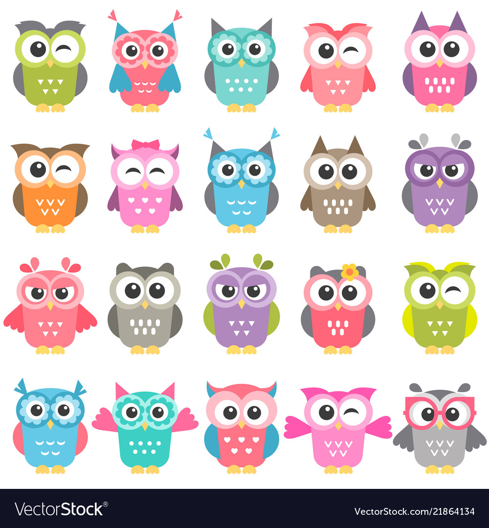 Set colorful owls isolated on white