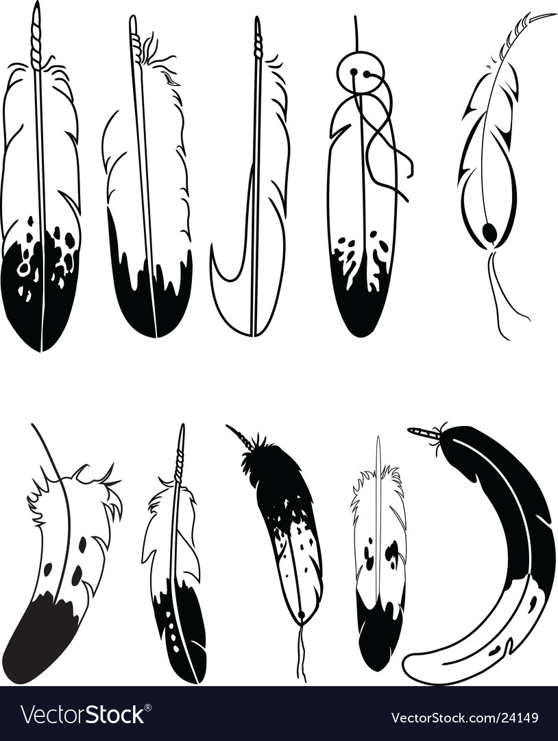 Feathers Royalty Free Vector Image Vectorstock