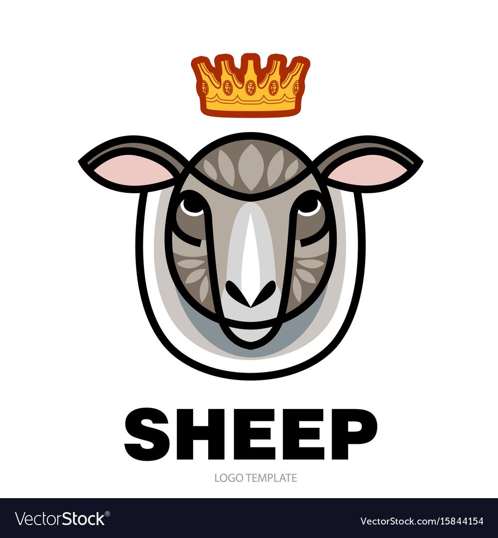 Drawing head of sheep