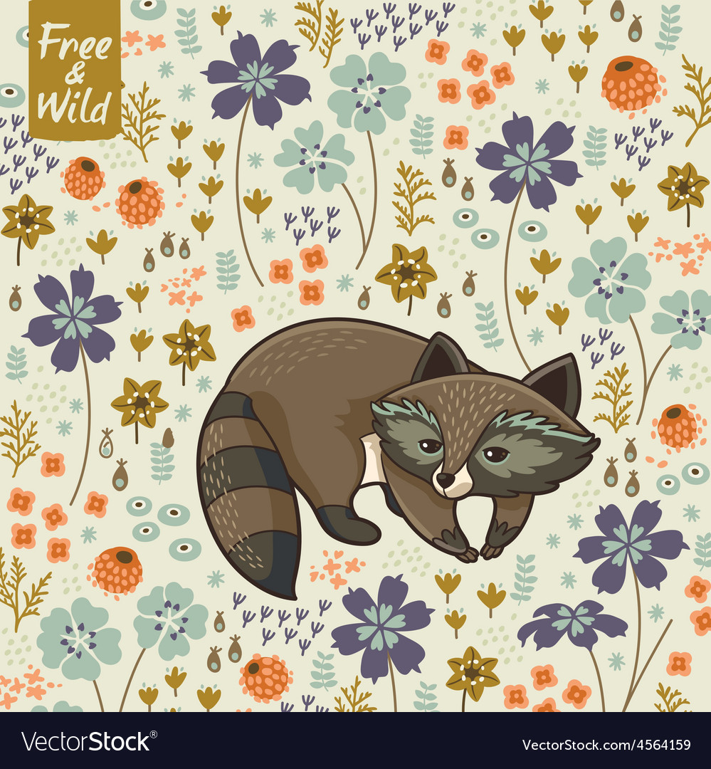 Funny little raccoon