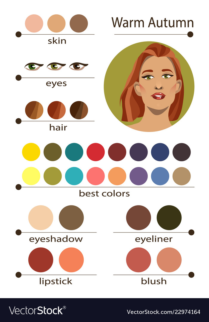 Seasonal Color Analysis Palette For Warm Autumn Vector Image