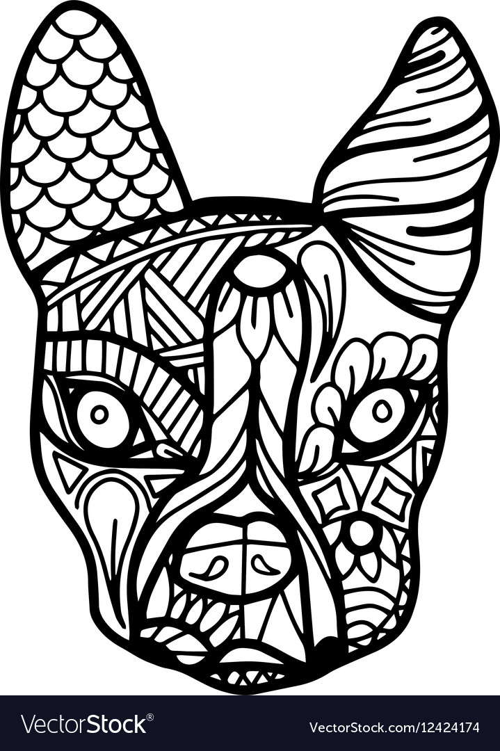 Boston Terrier or French Bulldog Coloring Page