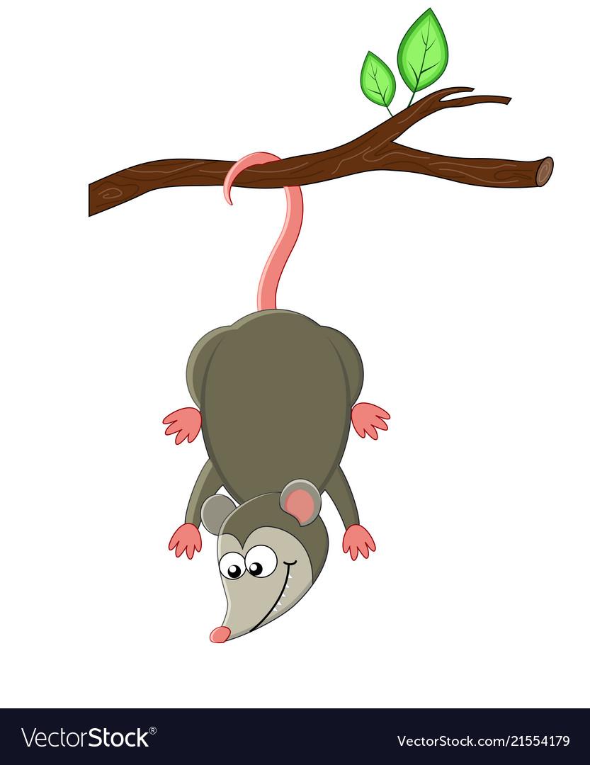 Cute cartoon opossuml
