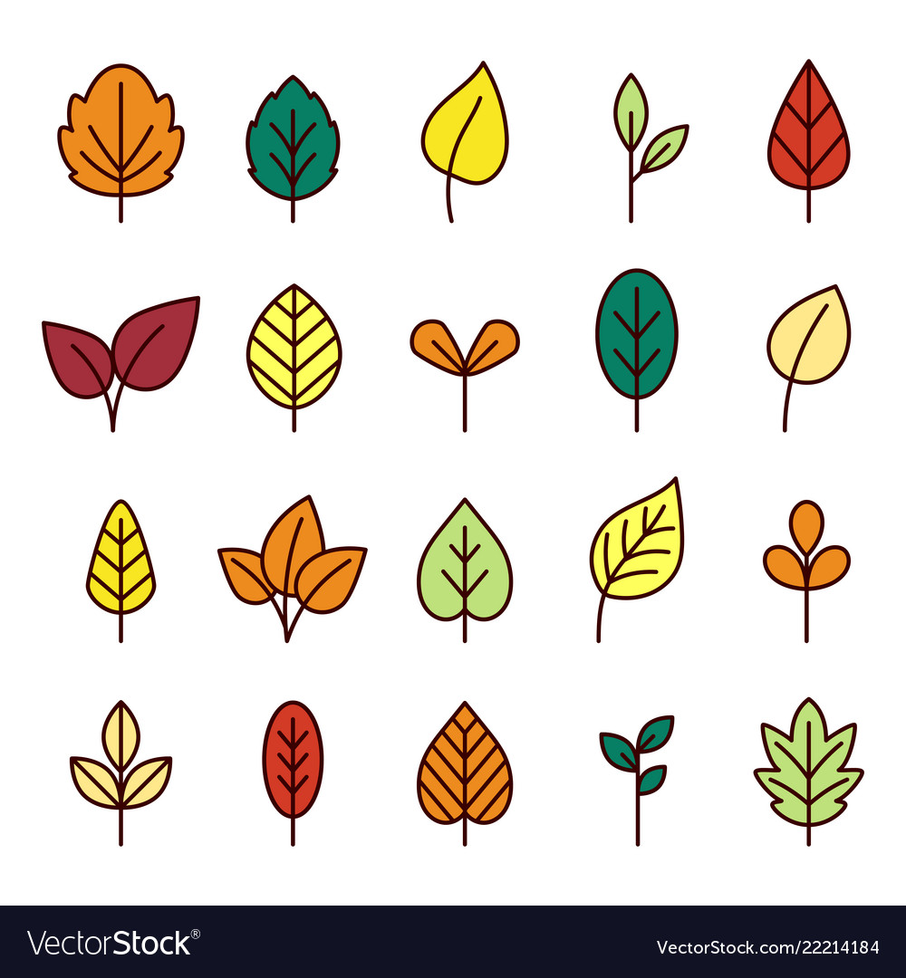 Leaves line icon collection