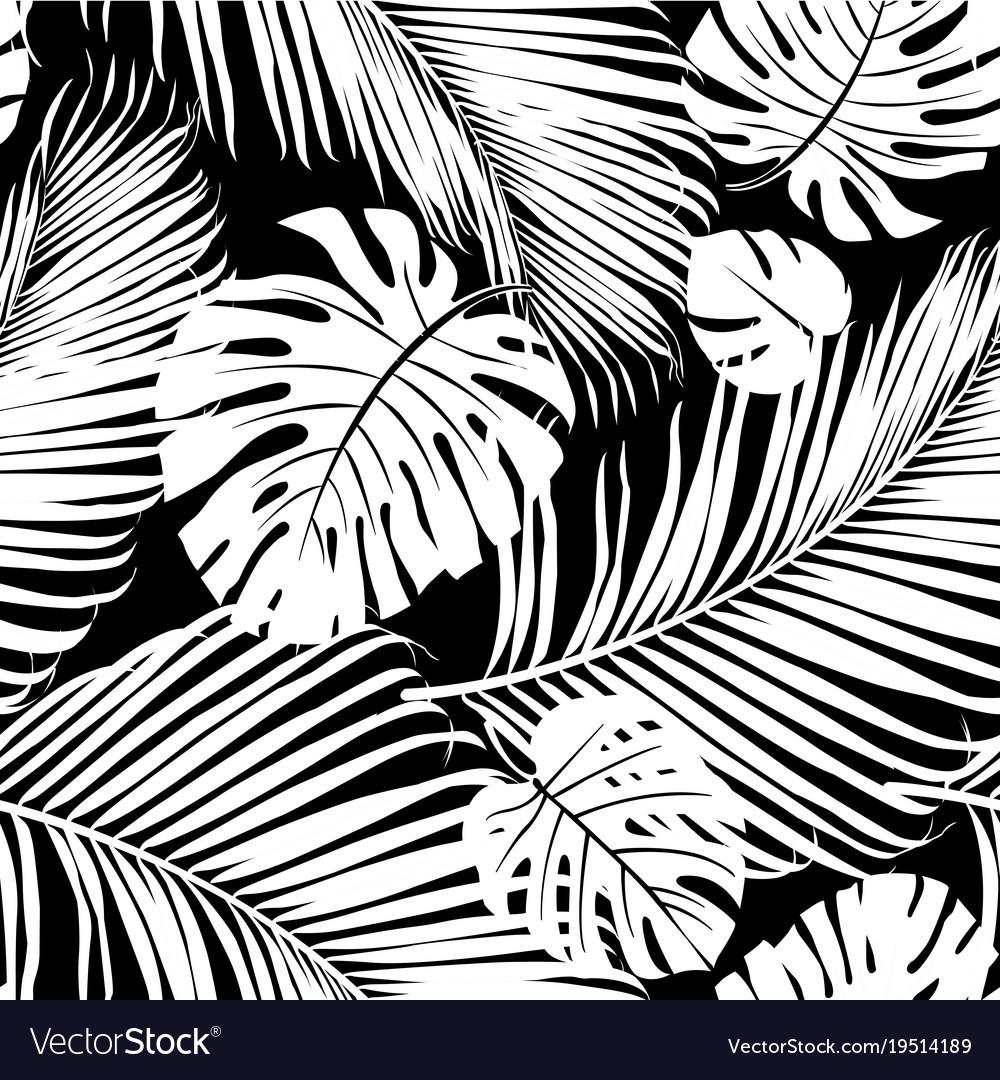 Strelitzia palm pattern