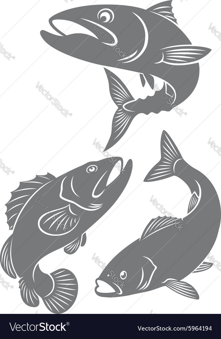 Silhouettes of fish
