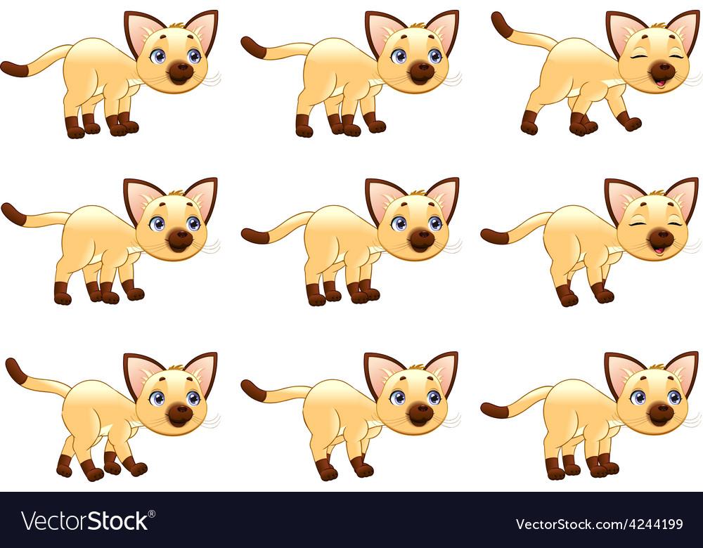 Cat walking animation