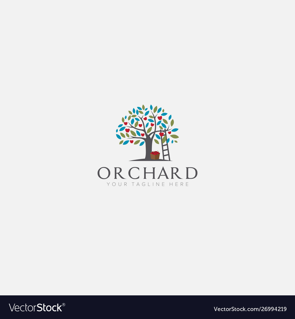 Apple Tree Logo Designs With Stairs Orchard Vector Image