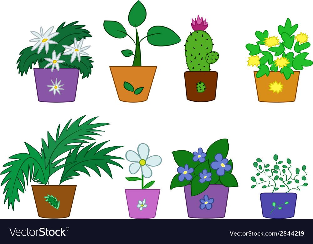 Cartoon flowers in pots vector image