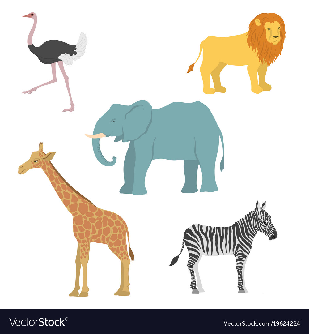 Cartoon african animals Royalty Free Vector Image