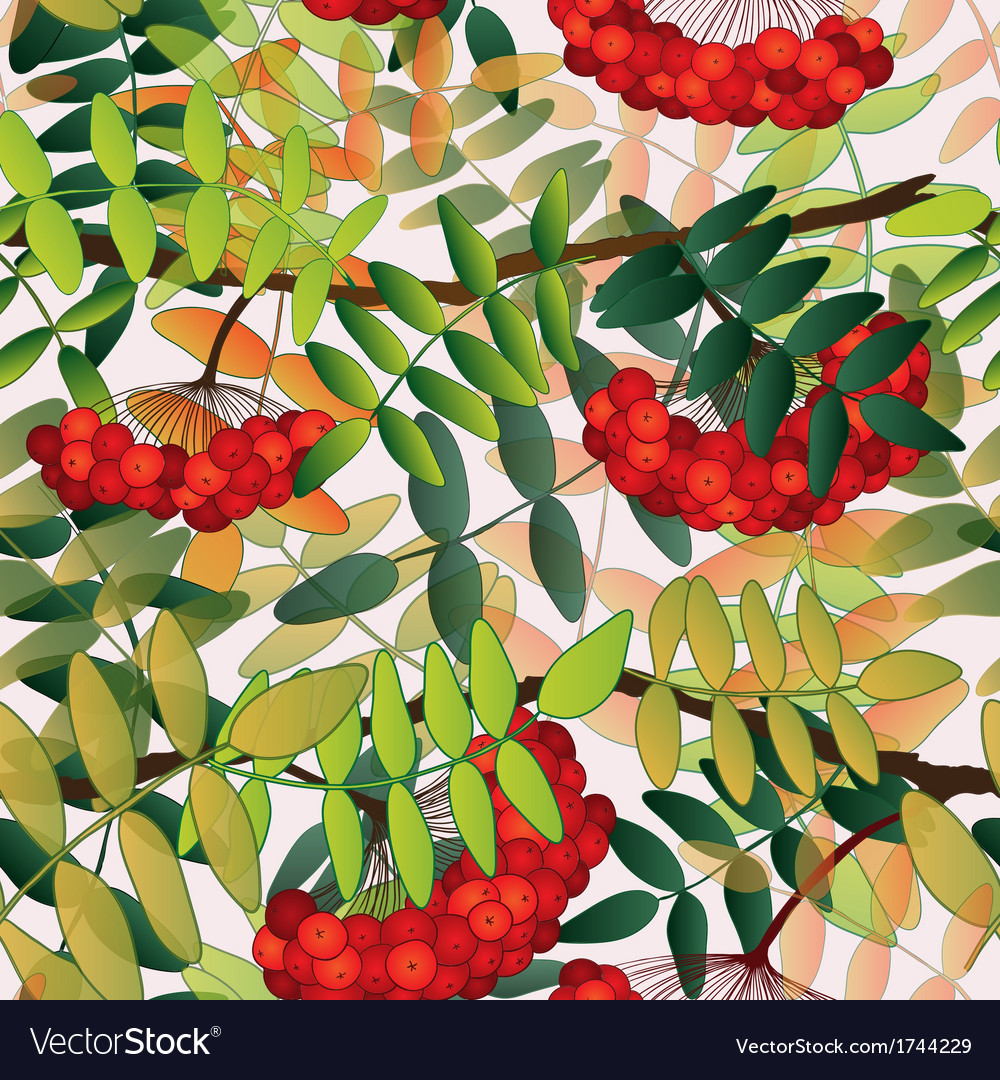 Seamless pattern with rowan berries leaves and