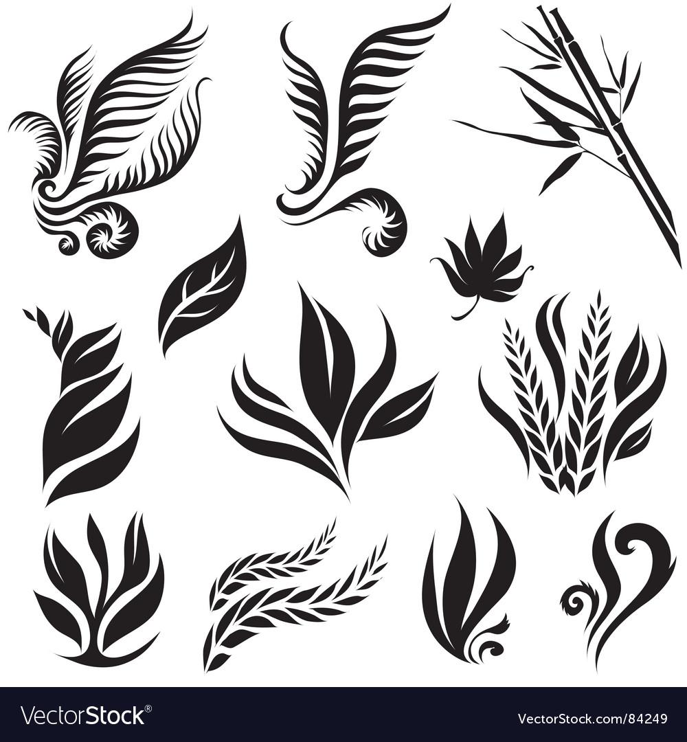 Leaf design elements vector image