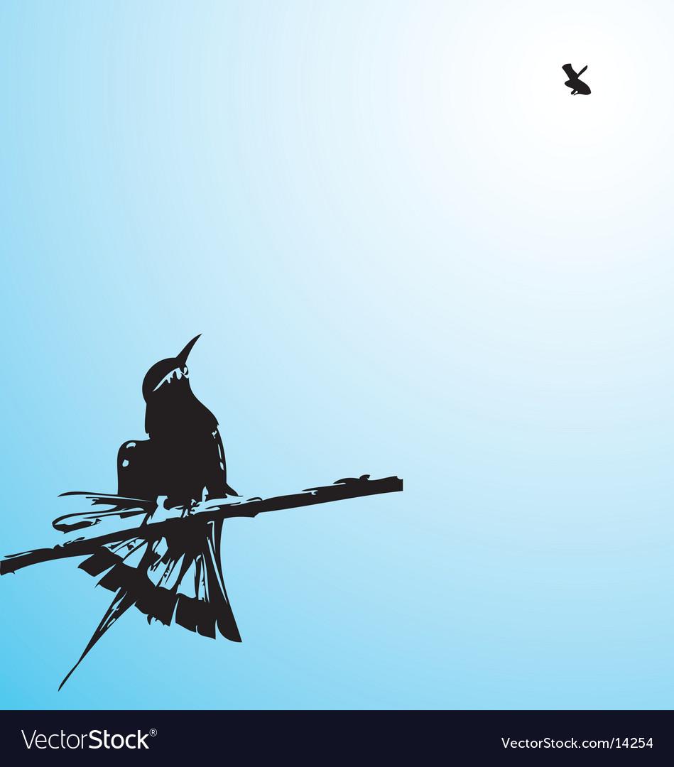 Tree humming bird vector image
