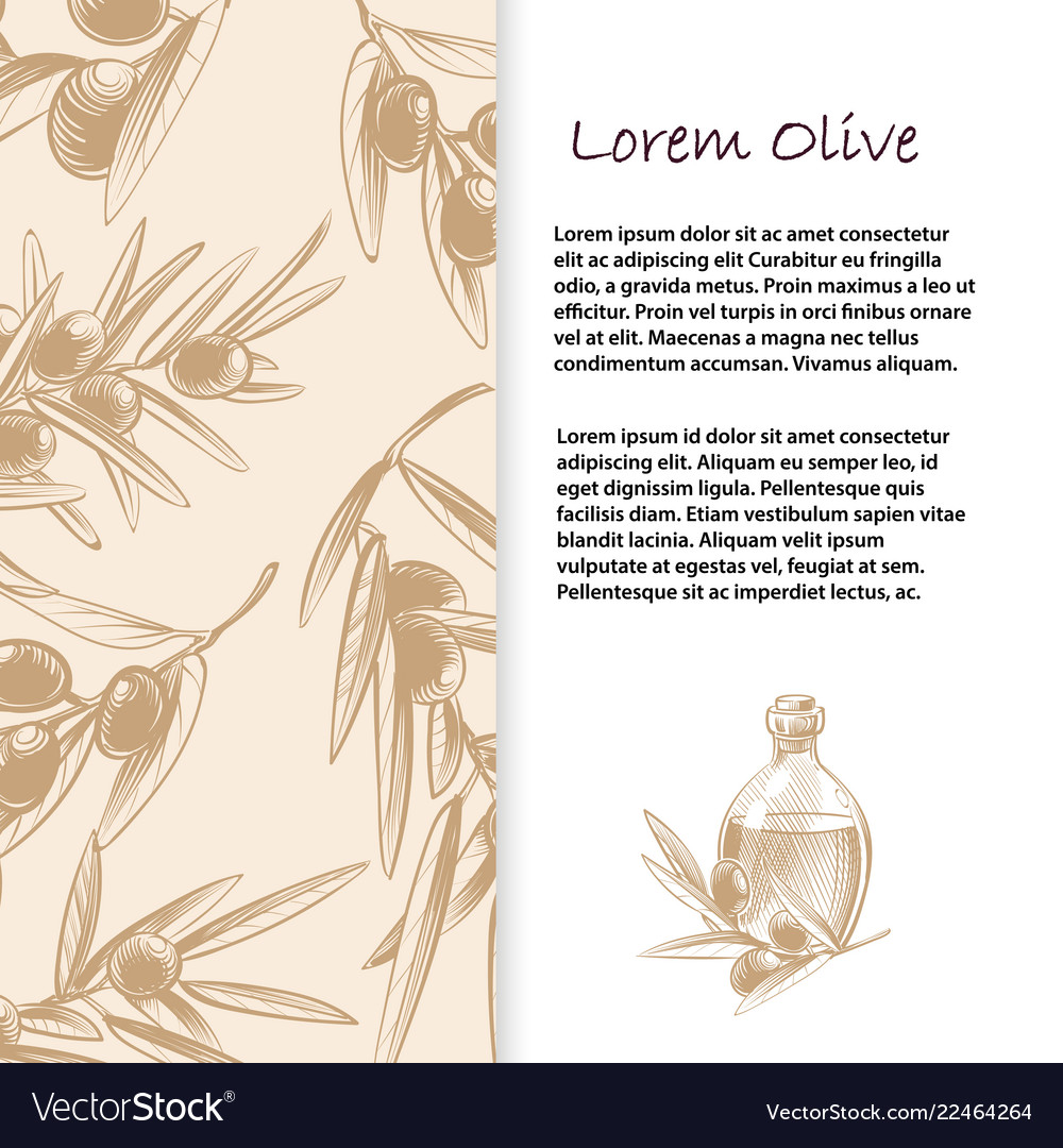 Olive branches banner template and poster