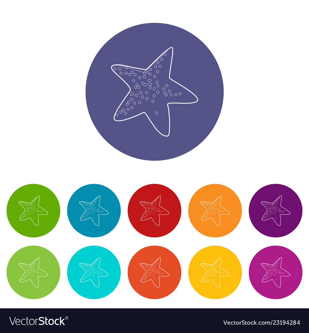 Starfish icons set color