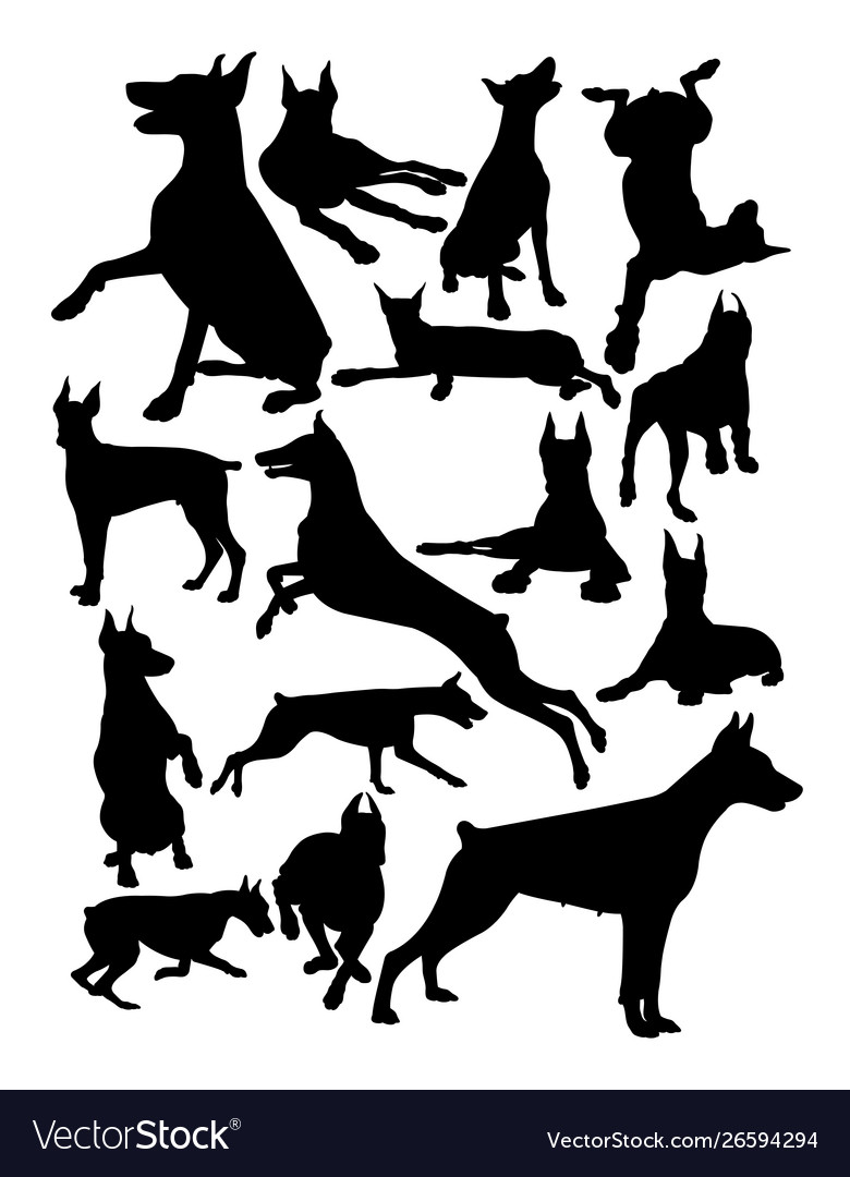 Doberman dog animal silhouette