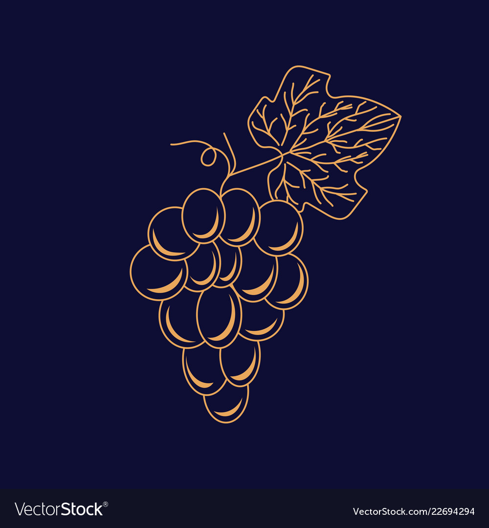 Grape logo icon in linear style for winery