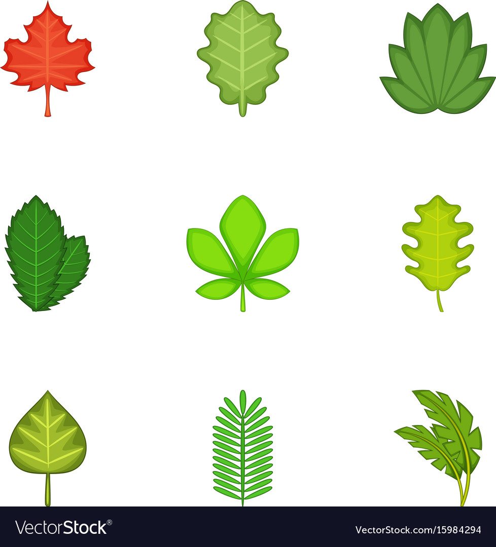 Ripped leaves icons set cartoon style