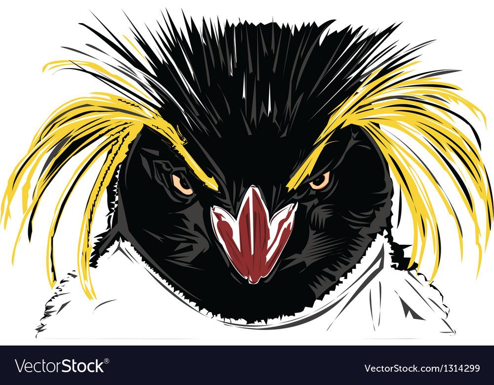 Rockhopper penguin vector image