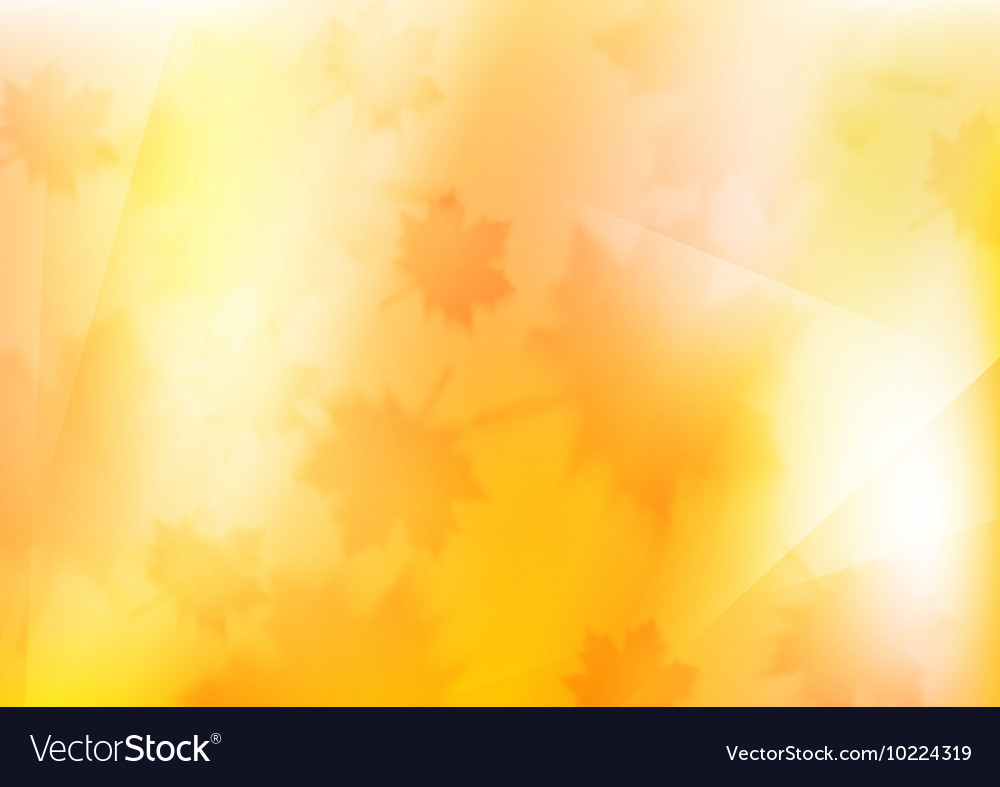 Blurred orange autumn background with maple leaves vector image