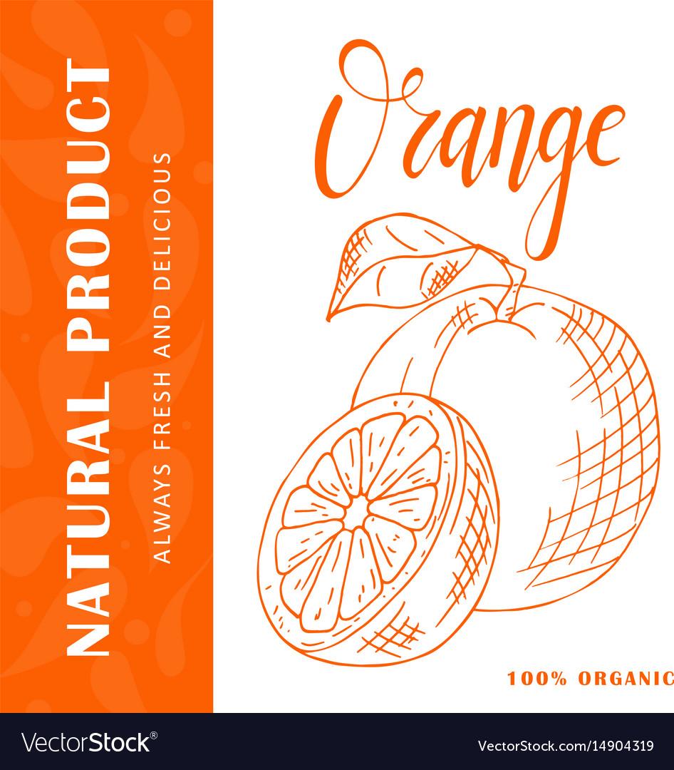 Fruit element of orange hand drawn icon