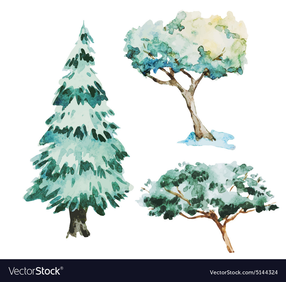 Watercolor trees vector image