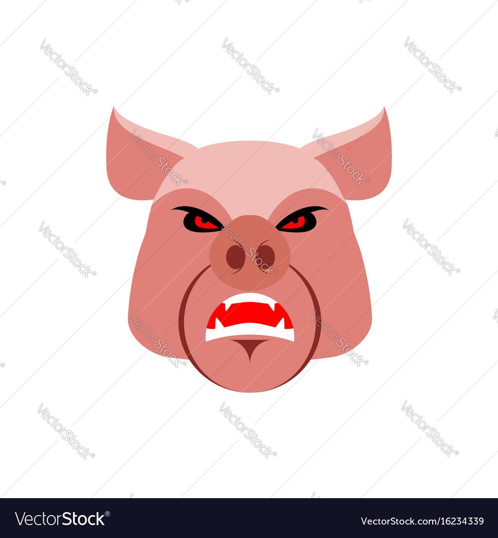 Angry pig evil boar grumpy hog aggressive piggy