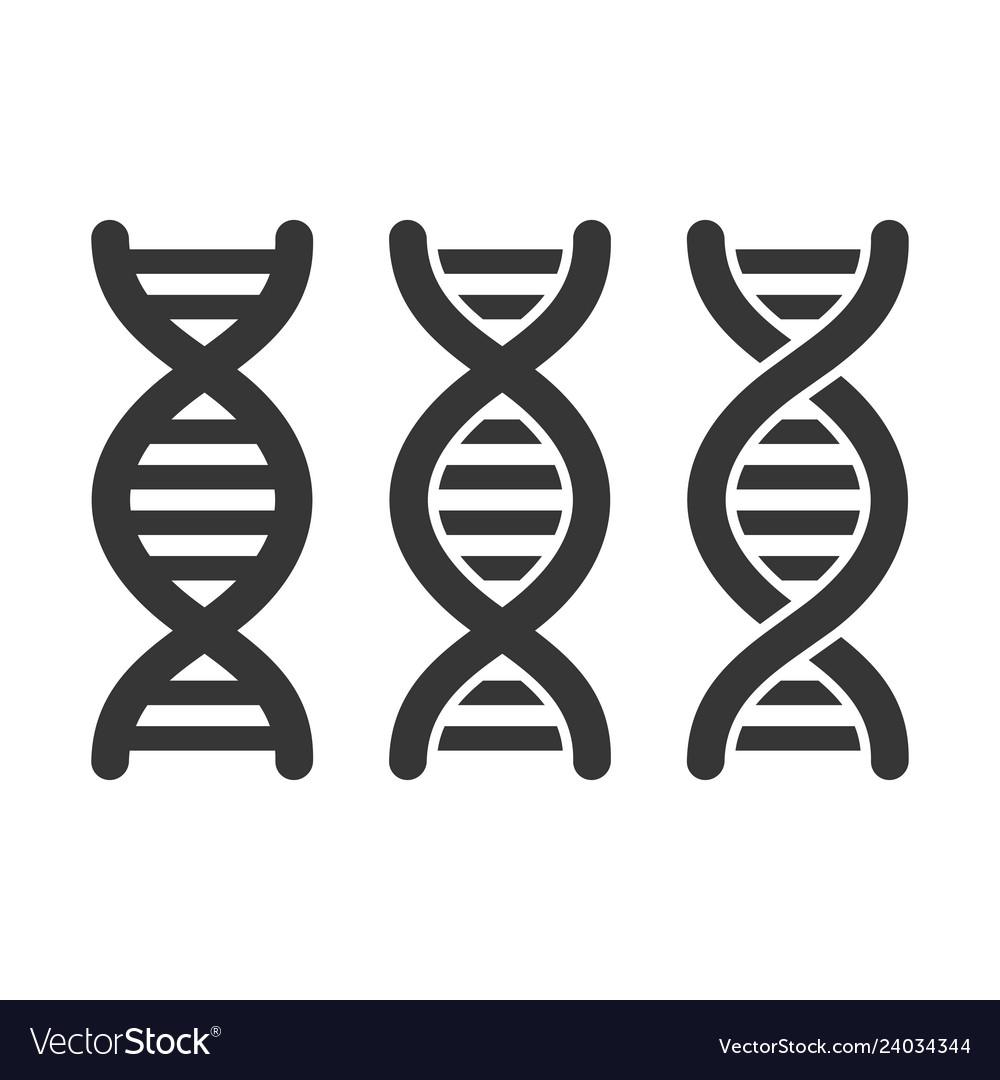 Dna or chromosome icons set on white background