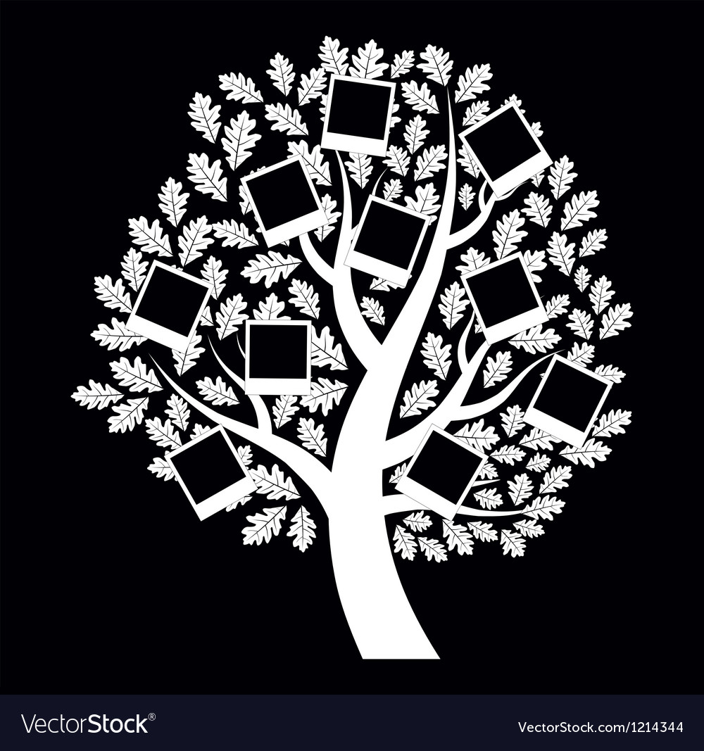 Family genealogical tree on black background vector image - Family tree desktop wallpaper ...