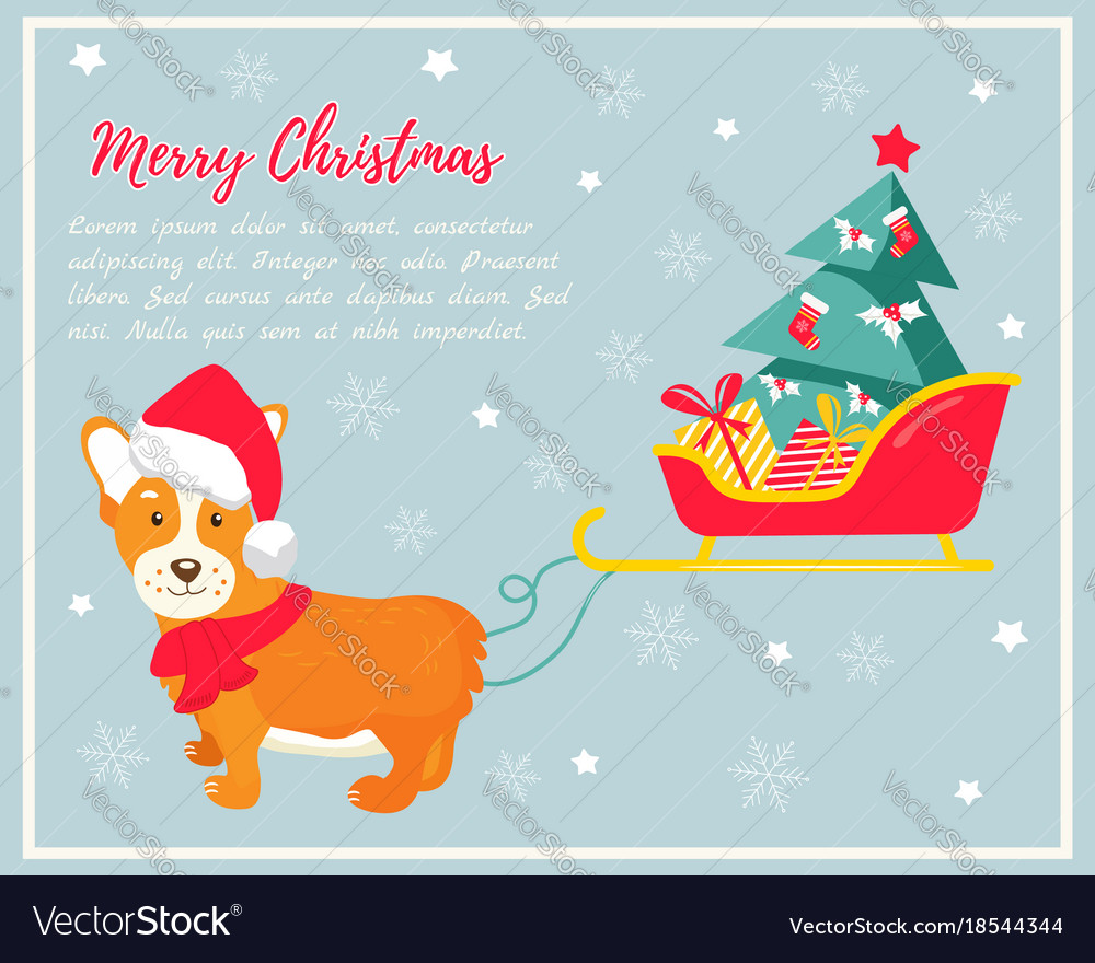 Holiday Greeting Card With Cute Corgi Dog Vector Image