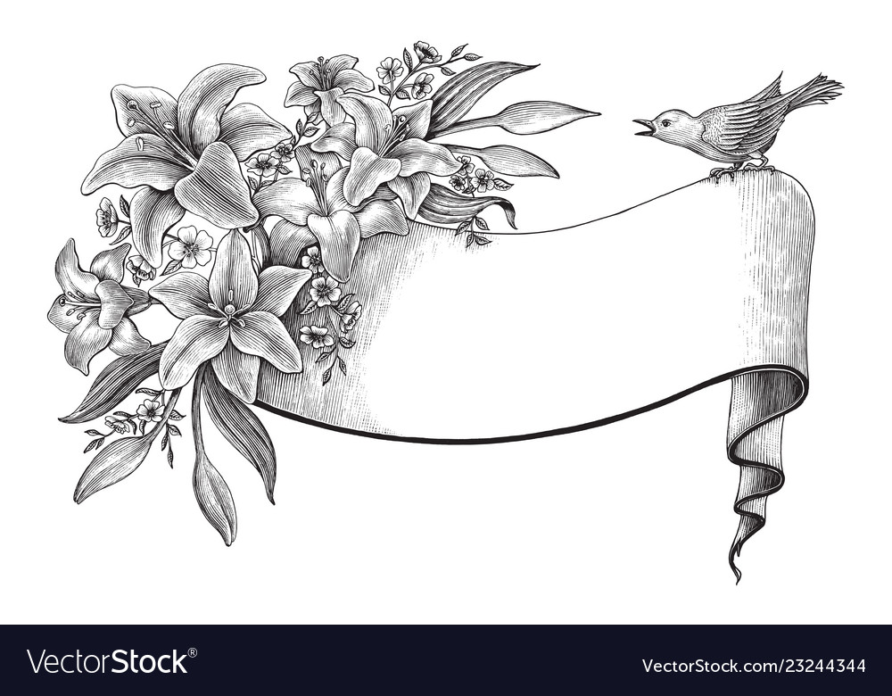 Lily flowers hand drawing vintage clip art with