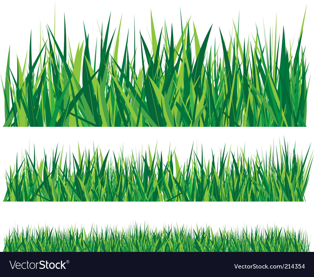 grass royalty free vector image vectorstock rh vectorstock com grass vector images grass vector intersect