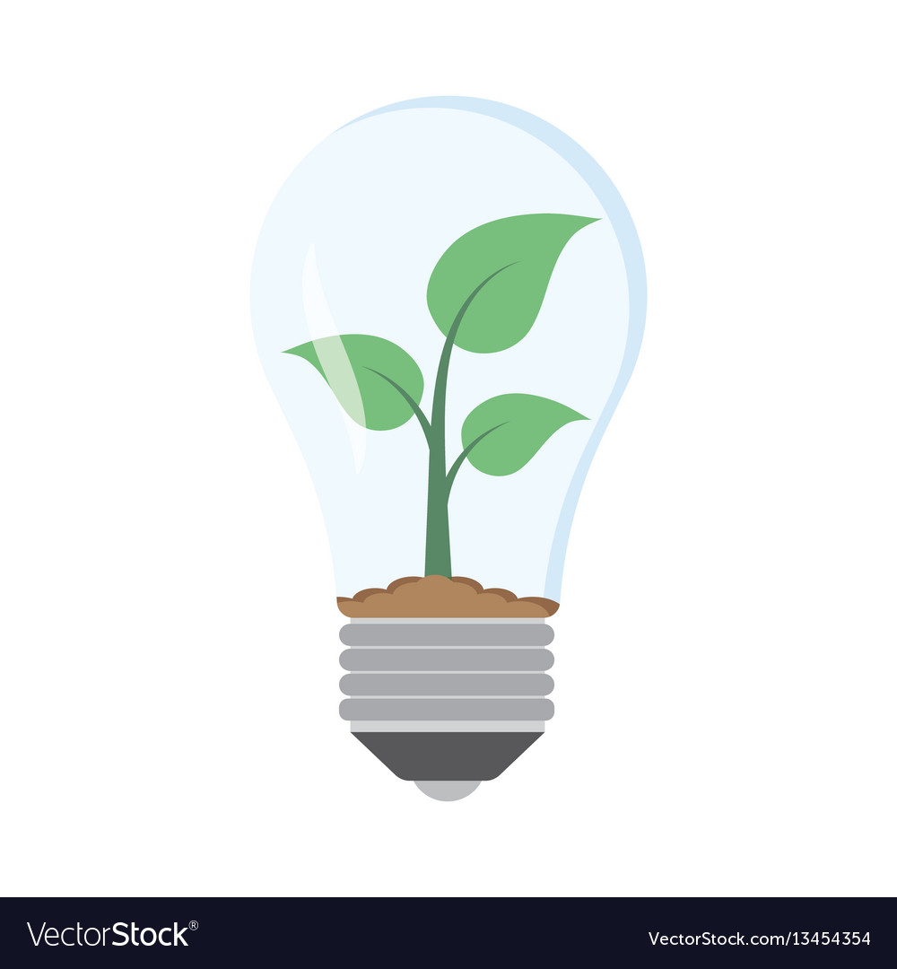 Green plant in bulb