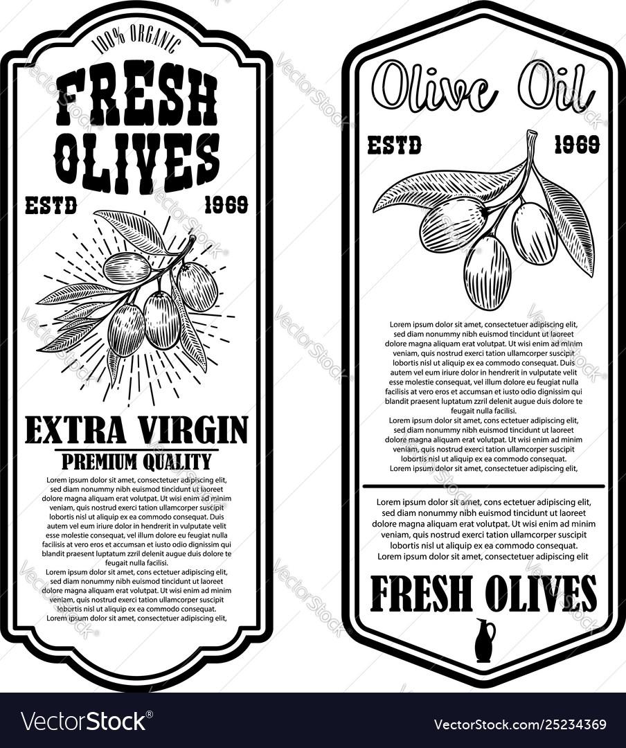 Set olive oil flyer templates design element