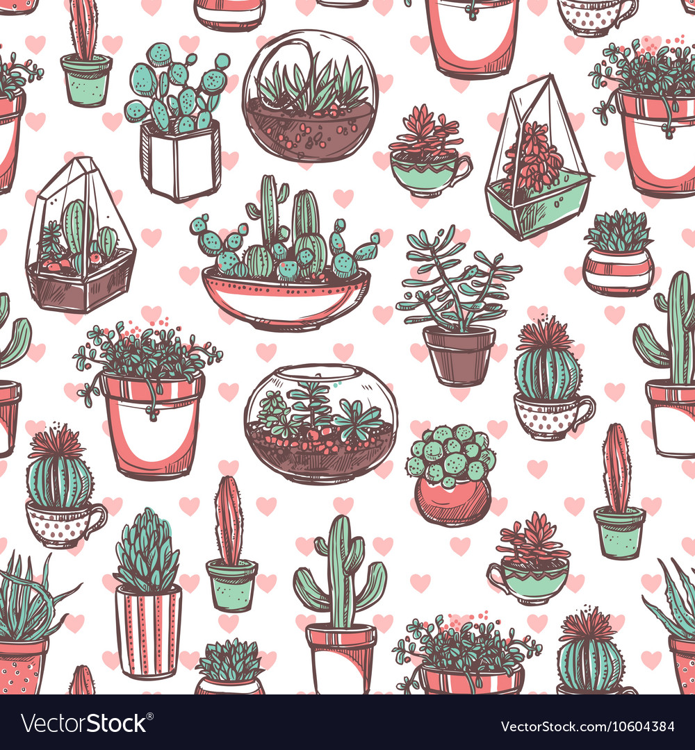 Succulents And Cacti Color Sketch Pattern