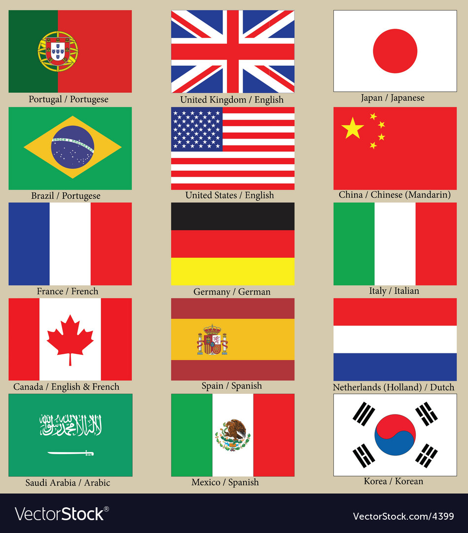 Internet language flags vector image