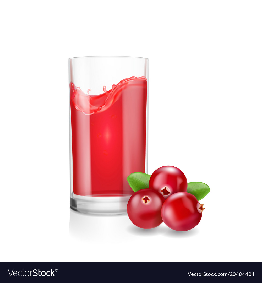 glass of cranberry juice with realistic cranberry vector image