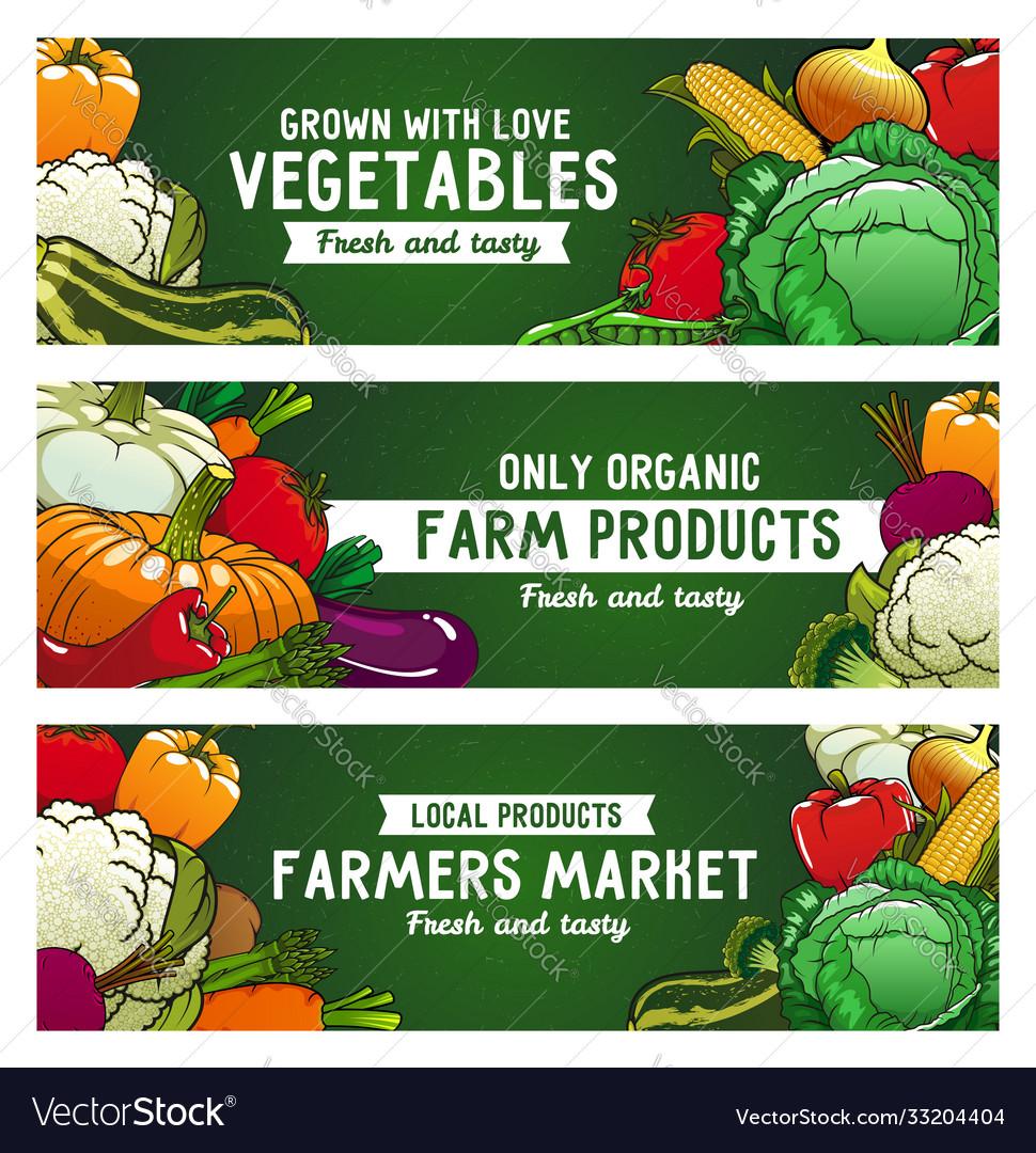 Vegetables banners farm food raw veggies