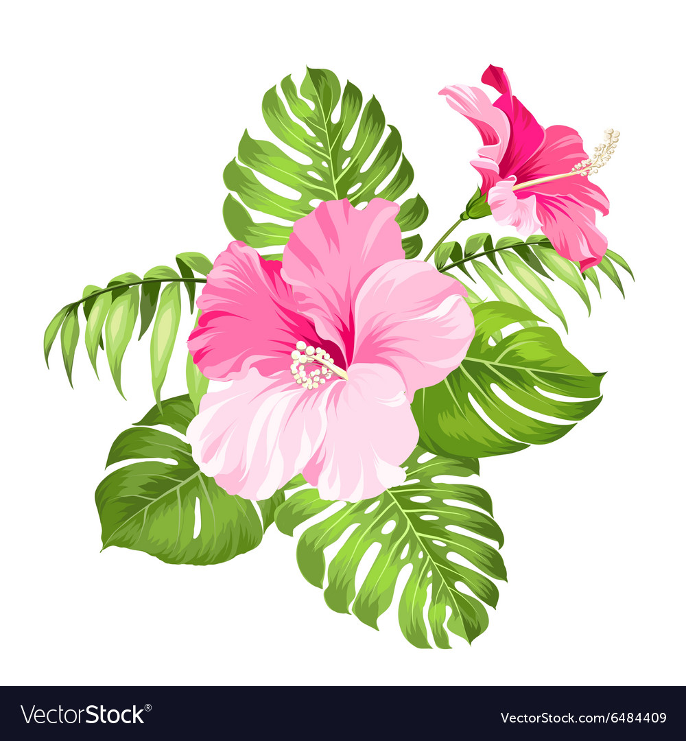 Tropical flower garland royalty free vector image tropical flower garland vector image mightylinksfo