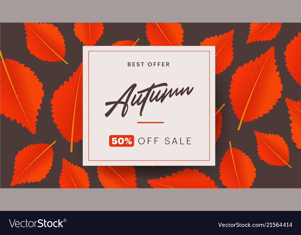 Autumn background layout decorate with leaves for