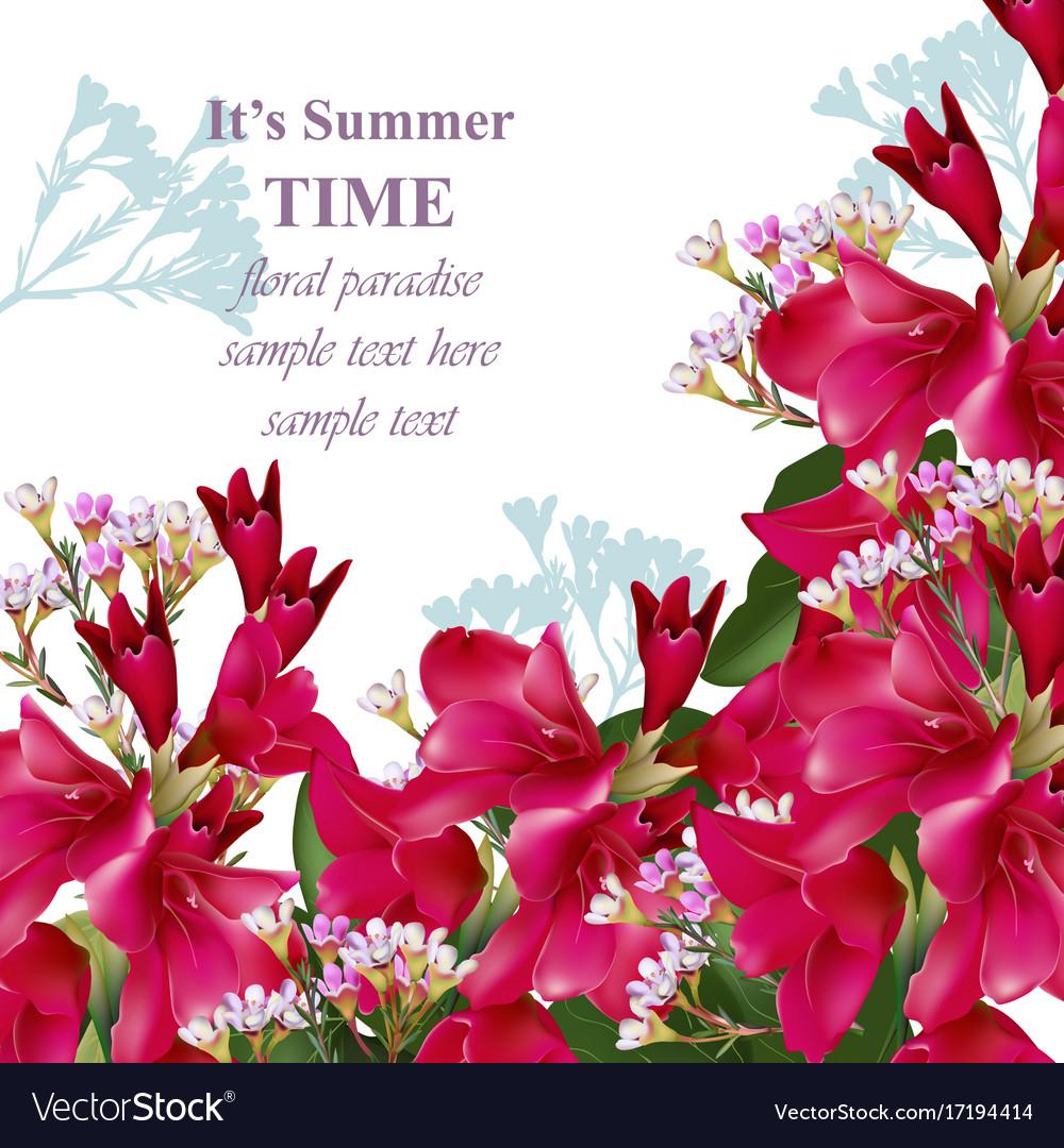 Gladiolus flowers summer bouquet invitation card Vector Image